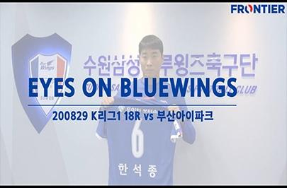 [푸른티어캠] EYES ON BLUEWINGS_부산전 되돌아보기