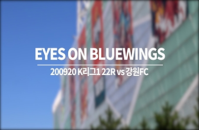 [푸른티어캠] EYES ON BLUEWINGS_강원전 되돌아보기