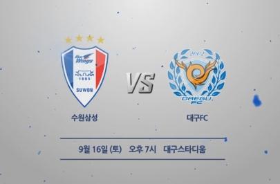 2017.09.16 K리그 클래식 29R 수원 vs 대구 하이라이트